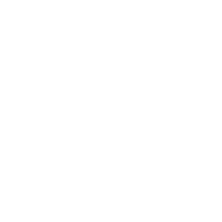 The Central Palace Hotel